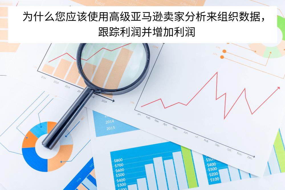 为什么您应该使用高级亚马逊卖家分析来组织数据,跟踪利润并增加利润 (1)